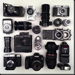 organizacion (10)